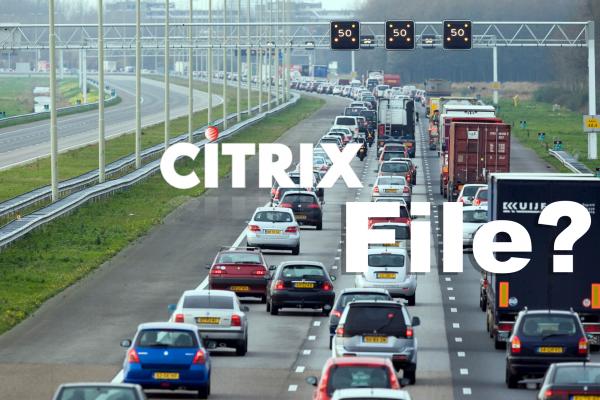 citrix file